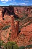 каньона спайдер de утеса chelly Стоковые Изображения RF