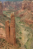 каньона спайдер de утеса chelly Стоковое Изображение