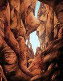 каньоны Юта Стоковое Изображение RF