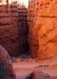 каньоны bryce Стоковые Изображения RF
