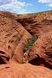 каньон антилопы Стоковые Изображения RF