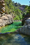 Каньон воды в Корсике Стоковые Изображения RF