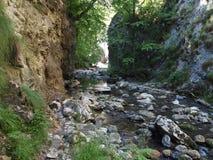 каньон в горах Apuseni, Румыния Стоковое Фото