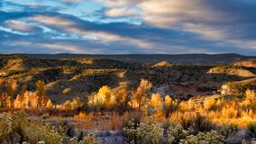 Каньон в ноябре стоковые изображения