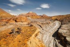 Каньон в пустыне стоковые фотографии rf