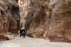 Каньон в Petra. Стоковое Фото