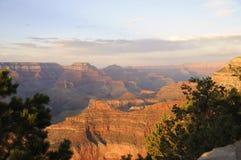 каньон грандиозный Стоковые Изображения