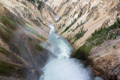 каньон грандиозный yellowstone Стоковые Изображения