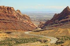 каньон запятнал волка Стоковая Фотография RF