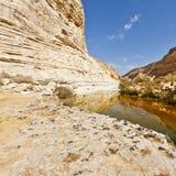 каньон Израиль Стоковые Фото