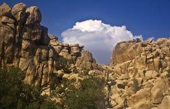 каньон коробки Стоковое Изображение RF