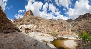 каньон медведя Стоковое фото RF