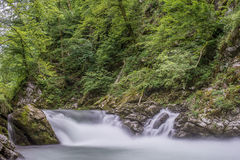 Каньон на Slovenian, ущелье Vintgar Стоковые Изображения