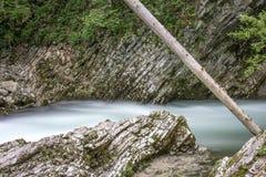 Каньон на Slovenian, ущелье Vintgar Стоковые Фотографии RF