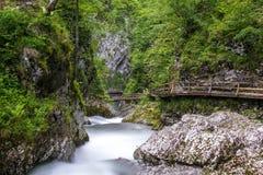 Каньон на Slovenian, ущелье Vintgar Стоковые Фото