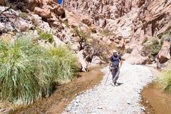 Каньон пустыни туристского backpacker авантюриста человека стоящий, Боливия Стоковое Изображение RF