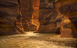 Каньон реки в вадях Mujib, Джордане Стоковая Фотография