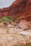 Каньон реки глуши-Paria скал AZ-UT-Paria Каньон-Vermillion Стоковые Фото