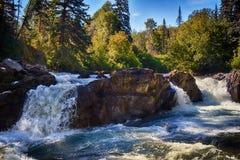 Каньон реки клюквы - лето Стоковые Изображения RF