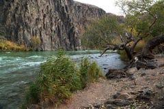 Каньон реки Charyn стоковые изображения