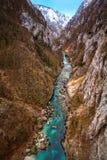 Каньон реки Piva Стоковые Фотографии RF