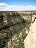 Каньон скалы в мезе Verde (США) (вертикаль) Стоковая Фотография RF