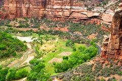 каньон склоняет zion стоковая фотография