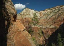 каньон спрятанный для того чтобы отстать zion Стоковое Изображение RF