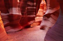 каньон США антилопы стоковое фото