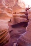 каньон США Аризоны антилопы Стоковые Фотографии RF