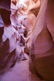 каньон США Аризоны антилопы Стоковая Фотография