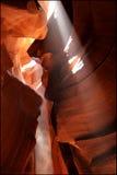 каньон США Аризоны 2 антилоп Стоковые Фото