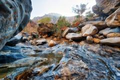 Каньон ущелья змейки в Омане стоковое фото