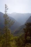 Каньон ущелья Samaria, Крит, Греция Стоковая Фотография RF
