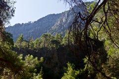 Каньон ущелья Samaria, Крит, Греция Стоковые Изображения