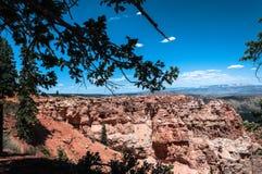 Каньон черной березы в национальном парке каньона Bryce, Юте стоковые фото