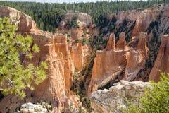 каньон Юта 01 bryce Стоковые Изображения RF