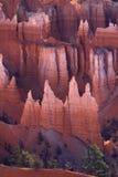 каньон Юта brice Стоковые Изображения