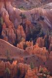 каньон Юта brice Стоковая Фотография