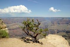 каньон 2 грандиозный Стоковая Фотография