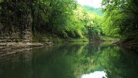 Каньон Abahsa реки Martvili, Georgia сток-видео