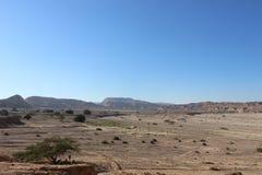 Каньон Ada вдоль следа Negev в Израиле стоковые изображения rf