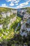 Каньон Arbayun в Пиренеи испанской Наварры Стоковое фото RF