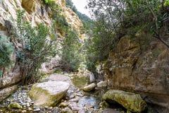 Каньон Avakas в Кипре стоковая фотография rf