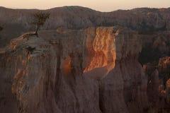 Каньон Bryce, Юта США Национальный парк стоковая фотография