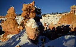 Каньон Bryce, Юта, США Стоковая Фотография RF