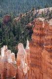 Каньон Bryce Hoodoos ландшафт горы Стоковое Изображение