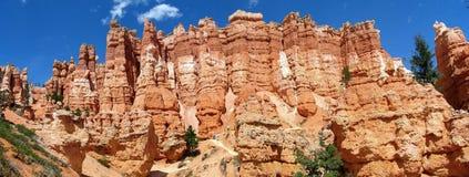 каньон bryce hoodoos панорама Стоковое Изображение