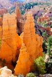 каньон bryce hoodoos np Стоковые Изображения