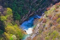 Каньон Cikola реки стоковые изображения rf